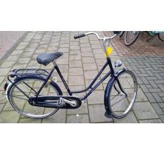 Gazelle maxinette - 87296